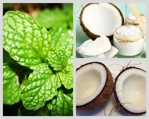 coconut oil for metabolism depression candida and more