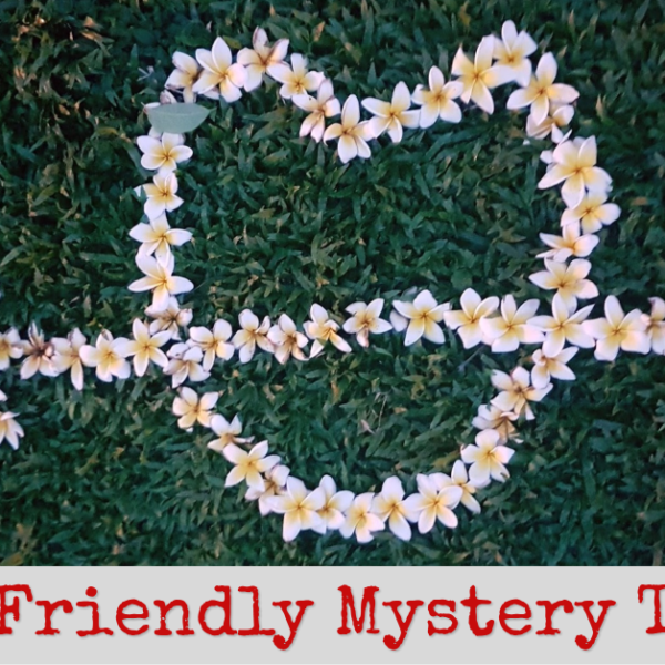 What's My Diet Friendly Mystery Treat? My Review!