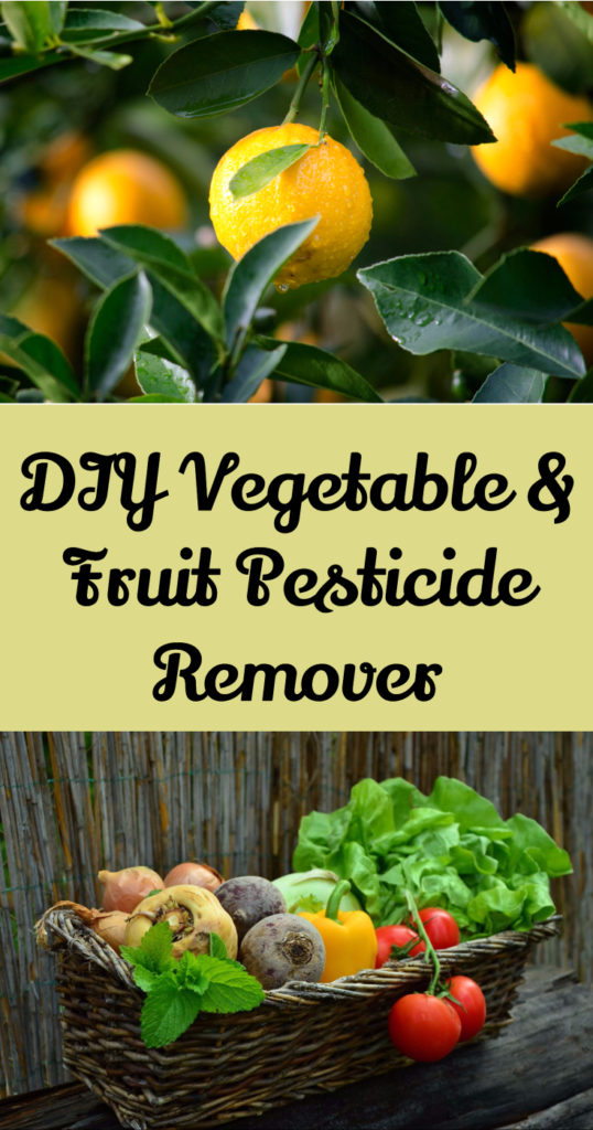 DIY fruit & vegetable pesticide removing spray. Remove toxins from fruits and veggies with ingredients already in your home. Make healthy produce even more healthy!