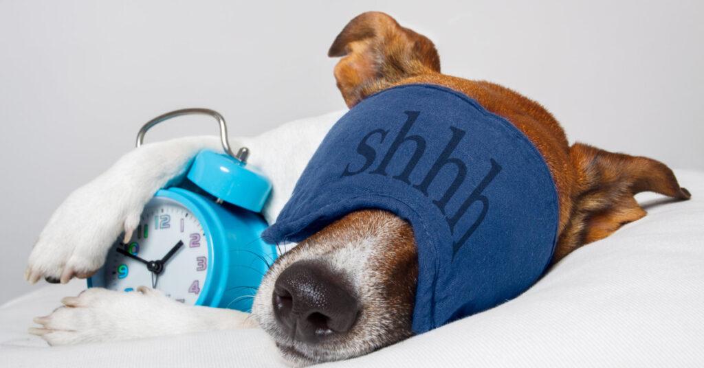 Get 8 Hours Sleep